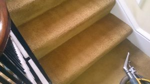 Stairs-after-Cleaning