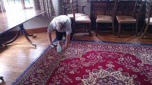 Hand cleaning a rug